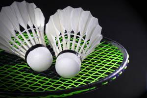 Badminton Bognor Regis